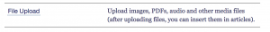 File upload option screenshot.